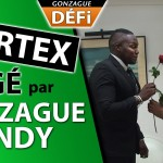 Cortex piégé par Gonzague et Andy